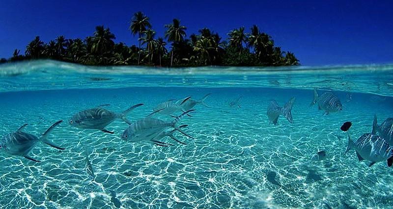Rüya Gibi Bir Tatil: Maldivler Turu..