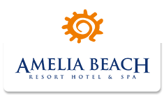 Amelia Beach Resort Hotel Spa