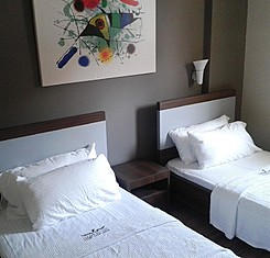 Superior İki Yatak Odalı Daire