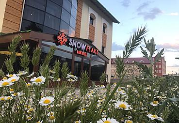 Snowflake Hotel
