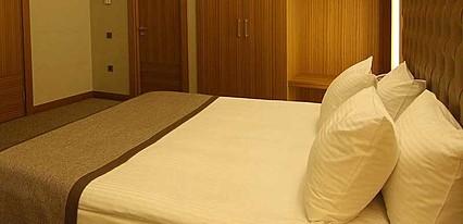 Armas Termal Resort Oda