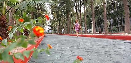 Bayar Garden Tatil Köyü Genel Görünüm