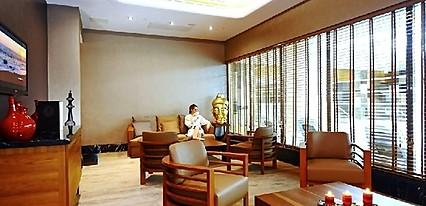 Crowne Plaza Bursa Thermal Spa & Convention Center Genel Görünüm
