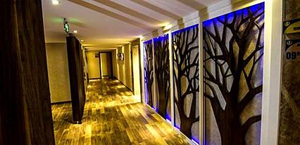 Grand Terme Hotel Genel Görünüm