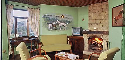 Ongen Country Hotel Oda