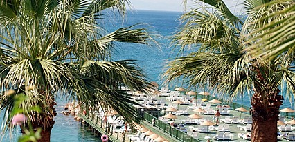 Palm Wings Beach Resort Havuz / Deniz