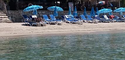 Sea Pearl Hotel Havuz / Deniz