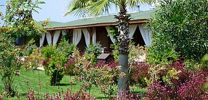 Sentido Flora Garden Oda