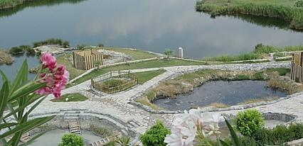 Umut Thermal Spa & Wellness Havuz / Deniz