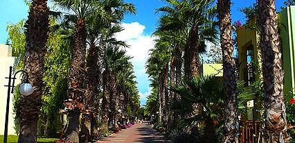 Von Resort Golden Beach  Genel Görünüm
