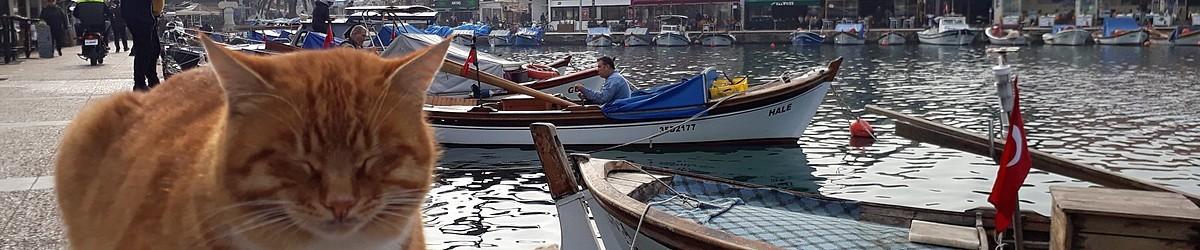 Foça Erken Rezervasyon Otelleri