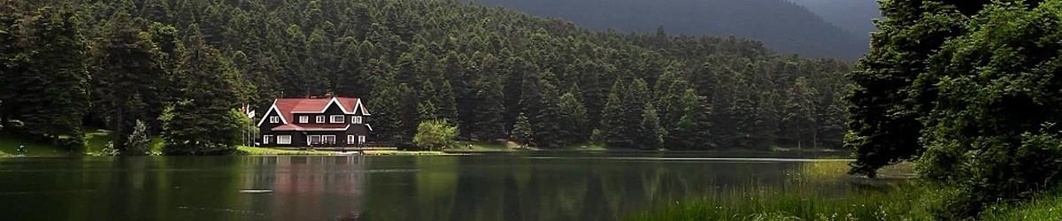 Yurtiçi Oteller