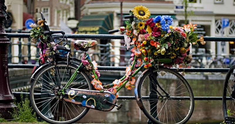 Hollanda'da Ulaşım