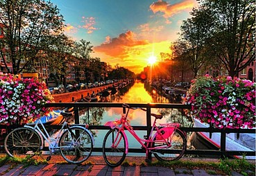 İstanbul - Amsterdam