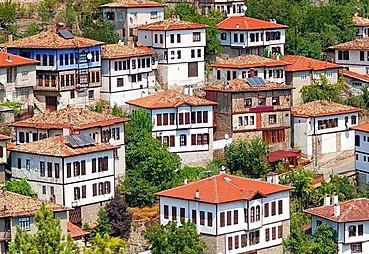 Batı Karadeniz Turu(Devrek Dahil)