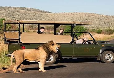 Güney Afrika Turu THY ile