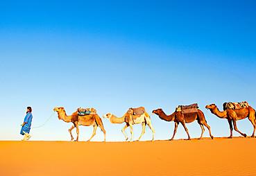 Katar Arabistan Çölleri Turu