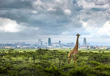 Nairobi – Masai Mara