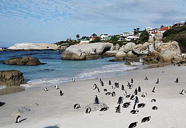 Sun City - Johannesburg - Cape Town