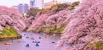 Güney Kore - Japonya - Tayvan - Hong Kong Turu Genel