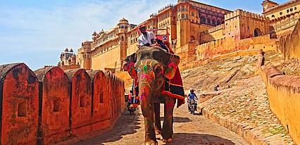 Hindistan Holi Festivali Turu Genel