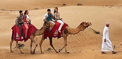 Katar Arabistan Çölleri Turu Genel